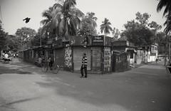Rajshahi, 2016. (rahat_kabeer) Tags: rajshahi bangladesh 2016 canon eos canon6d 24105mm street monochrome bnw people walking bird crow walkingpeople flying blackbird closedshop tree sky natural morning bycicle