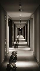 [356] - of long corridors (jathdreams) Tags: amritsar india incredibleindia northindia travel travelphotography hotel radissonblu monochrome blackandwhite bokeh bnw interior interiordecor hallway symmetry minimal minimalistic project365 nikon nikond5100 50mm 50mmf14d