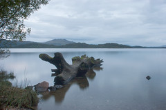 Day 300 - 365 (Chris Jackson Photos) Tags: landscape mountainscape mountain water lake loch lomond log scotland