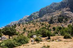 Le magnifique site de Tala Guilef, la source du sanglier en kabyle (Ath Salem) Tags: algrie tiziouzou djurdjura montagne assi youcef youssef tala guilef         singe magot boghni