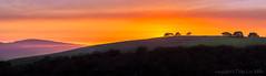 Smoke Gets in My Eyes (philipleemiller) Tags: landscape nature d800 carmel california panoramas sunset rollinghills firesmoke oaktrees coastalfog pinkskies pacificcoast