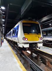 172101 (R~P~M) Tags: train railway diesel chilternrailways dbarriva england uk unitedkingdom greatbritain 172 depot london wembley multipleunit