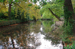 D15608.  Lloyd Park. (Ron Fisher) Tags: water lake pond lloydpark walthamstow e17 london londone17 trees green path pentax pentaxkx tamron tamron18200mm tamronaf18200mmf3563xrdiiildasphericalif park reflections