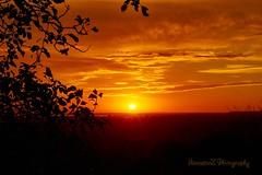 Golden Sunrise (AncasterZ) Tags: sunrise sunset hamilton canada laea1 sal1650