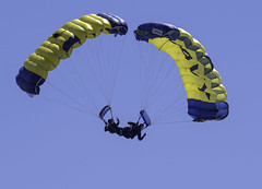 Paired Divers (dcnelson1898) Tags: marinecorpsairstationmiramar marinecorps marines sandiego california mcasmiramar 2016mcasmiramarairshow airshow airplanes jets helicopters usarmy goldenknightsparachuteteam leapfrogs usnavy freefall skydiving parachute airborne