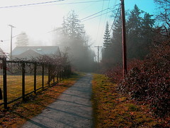 """Padden lake path • <a style=""""font-size:0.8em;"""" href=""""http://www.flickr.com/photos/59137086@N08/7885380104/"""" target=""""_blank"""">View on Flickr</a>"""