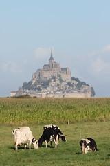 Mont Saint Michel (g e r a r d v o n k ) Tags: travel france 1025fav canon eos fantastic photos expression ngc 7d unlimited yabbadabbadoo flickraward newacademy canoneos7d  pinnaclephotography flickrtravelaward artcityart