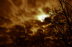 Eight Seconds (Truebritgal) Tags: longexposure ohio orange cloud moon tree nature silhouette sepia night lens moving movement nikon branches fast moonlight nikkor drifting fastmoving 18200mm 8secs wintersville d7000 truebritgal