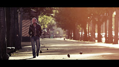 man and pigeons (Eneade) Tags: light cinema paris france bokeh candid cinematic streetshot eneade