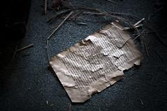 Fragments (Nutena) Tags: old house dark decay urbanexploration maison desolate decaying vieux feuille ambiance urbex délabré ténébreux défraîchi arrachée