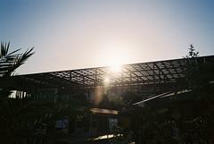 (COMS) Tags: film lines silhouette architecture sunrise turkey lens airport pattern olympus palmtrees flare shape scape mjuii stylusepic dalaman