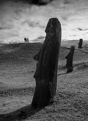 In the Land of the Giants (Rano Raraku, Easter Island) (Foto Blitz Color) Tags: sculpture statues heads volcanic moai easterisland quarry rapanui isladepascua ranoraraku rapanuinationalpark