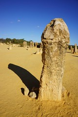 Unusual Rock Formation.... (PerkyBeans) Tags: shadow rock penis sand funny desert lol joke australia excited formation odd laugh western limestone unusual amusing erection shape highlight phallus exciting pinnacles arouse