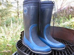 From a fleamarket (camilla157) Tags: boots rubber wellies gummistiefel sailingboots