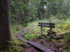 Junction (Urban Disturbance) Tags: usa washington hiking pacificnorthwest mountainloop ashlandlakes