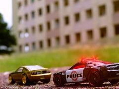 Nearly twins GT (tonywheels) Tags: ford car lights twins wheels police chase 164 concept mustang gt th jumelles pursuit diorama arrested hunt diecast arrestation poursuite flashinglight gyrophare