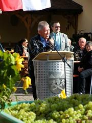 Dr. Otto Hnnerkopf, MdL (barockschloss) Tags: germany bayern bavaria grapes franken trauben