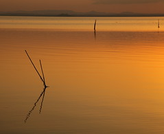 Quando tramonta il sole (da.geli) Tags: sunset italy lake water lago umbria trasimeno mygearandme mygearandmepremium quandotramontailsole