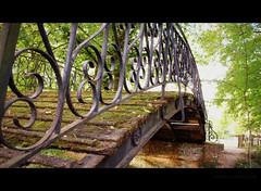 "rotten bridge 39/52 ""break the rules"" (Raf Degeest Photography) Tags: bridge canon mechelen 2012 week39 522012 52weeksthe2012edition weekofseptember23"