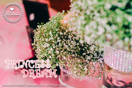Braham-Wedding-Concept-Portfolio-Princess-Dream-1920x1280-15