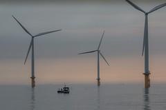 Mackerel Season (dave.pix2013) Tags: southgare mackerelseason windfarm