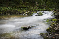Haven't taken river photos in a long time (Layna.Campbell) Tags: river longexposure mist flowing green trees nature rocks nikond200 dslr camera photography landscape photographer