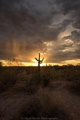 monsoon my dear D75_4161 (steve bond Photog) Tags: sunset arizona