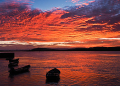 burning sky-8220138 (E.........'s Diary) Tags: sunset newburgh boats waterfront river tay eddie rossolympusomdem5markiiscotlandaugust2016newbu rossolympusomdem5markiiscotlandaugust2016newburghfifescotland