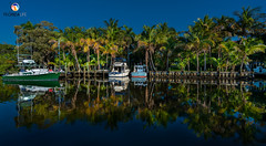 Florida Life: Boater's Paradise (Thncher Photography) Tags: sony a7r2 sonya7r2 ilce7rm2 zeissfe1635mmf4zaoss fx fullframe scenic landscape waterscape nature outdoors tropical palmtrees boating docks piers reflections colors intracoastal palmcity stuart martincounty florida southeastflorida