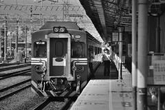 _IMZ5054 () Tags:   emu emu500    daewoo  train railway