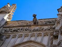 Rue (Somme) - Chapelle du Saint-Esprit (Franois Collard) Tags: gargoyle gargouille