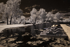Boat Dock At Santee Lakes (Bill Gracey) Tags: infrared ir convertedinfraredcamera infraredphotography santeelakes boats boatdock highcontrast trees water clouds sky