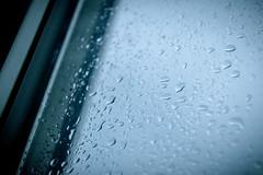 Drip Drop Wednesday (bboneyardd) Tags: gloomy moody raining longexposure long exposure black white blackandwhite windsor ontario canada contrast low key lighting shadow detail smooth