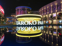 Merry-go-round, light trail and reflection (xytr99) Tags: merrygoround night kaohsiung taiwan light lighttrail tarokopark olympus penf