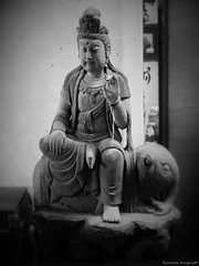 Buddah Seated (antaver) Tags: photo buddah elephant vintage monterey canneryrowantiquemall antiques finds old imports statues carving stone granite icon symbol rock religious vignette