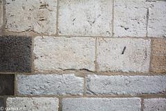 Rochas Magmticas_-30 (correia.nuno1) Tags: basaltos colnia deutschland geologia geology kln stmarihimmelfahrt trachyt trachytvomdrachenfels tuffsteine tufos tufosvulcnicos