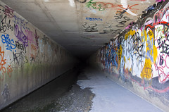 dark (Greg Rohan) Tags: marrickville aerosolart urbanphotography photography tunnel urbantunnel urbanart graffitiart graffiti 2016 d7200 graff spraypaintart artwork artist arte art