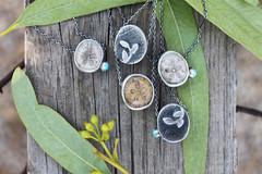 Sea Treasures. (ashleyweber) Tags: ashleyweber ashley weber sand dollars handmade sterling silver jewelry art design fashion ocean sea shells fossils necklaces metalsmith silversmith