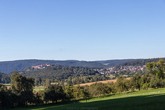Dilsberg in August 2016 XI (boettcher.photography) Tags: august summer sommer 2016 neckargemnd germany deutschland dilsberg badenwrttemberg rheinneckarkreis meadow wiese sashahasha boettcherphotography