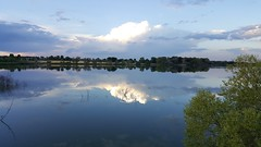 August 26, 2016 - Reflections on McKay Lake in Broomfield. (David Canfield)