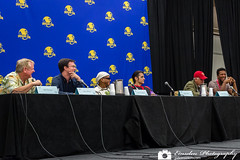 Ask a Character - Dragon Con
