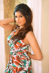 Bollywood Actress ANCHAL SINGH Photos Set-1 (29)