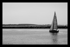 Sailboat Scheveningen (Luke Hermans) Tags: sail boat sailboat scheveningen den haag hague netherlands sea docks marine marina boats