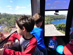 Happy lads (Snuva) Tags: australia nsw sydney skysafari cablecar ropeway tarongazoo