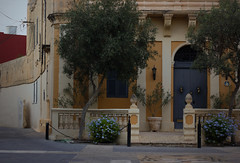 Mosta, Malta (Jamie Toal) Tags: 50mm canon canon550d niftyfifty malta mosta europe travel animals nature