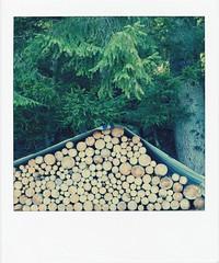 a u t u n n o (ghiro1234 []) Tags: autunno equinozio legna legnaia biborgo ticino valpontirone svizzera primogiornodautunno autumn syksy vjesht udazken   jesen efterret taglagas automne  hst  otoo herbst