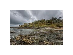 IMS Prussia Cove (silver/halide) Tags: prussiacove ims internationalmusiciansseminar seashore seascape rocks shoreline lowtide johnbaker d750 southwestcoastalfootpath cornwall kernow poldark