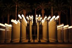 LACMA (Lauren Fowler) Tags: california nightphotography art boyfriend beautiful losangeles eerie exhibit palmtrees lacma lampposts