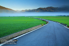 (nodie26) Tags:            paddy rice field farm sky  taiwan         tour  sun sunrise   color   star