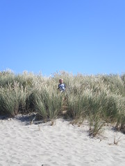 Ethan out to weeds (Todd Gundersomething) Tags: ocean beach oregon coast julia ethan pacificocean manzanitaor
